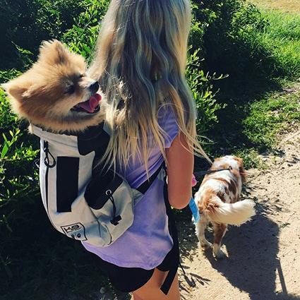 0906fe899178 The original dog carrier backpack that is safe